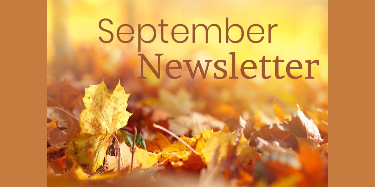 Newsletter September 2020