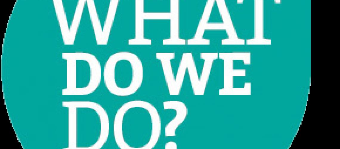 What-do-we-do_